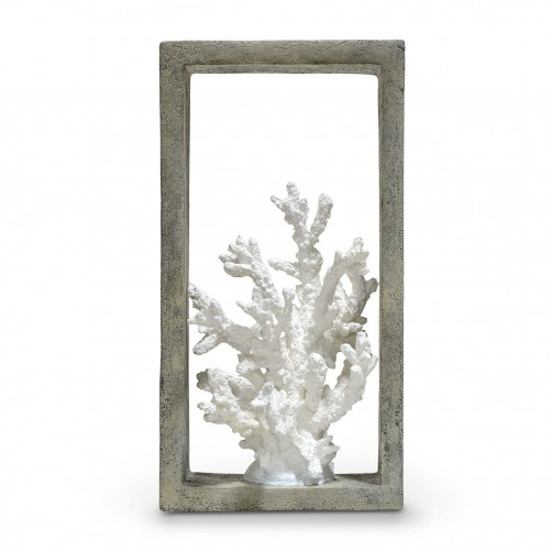 indoor/outdoor finger coral shadow box
