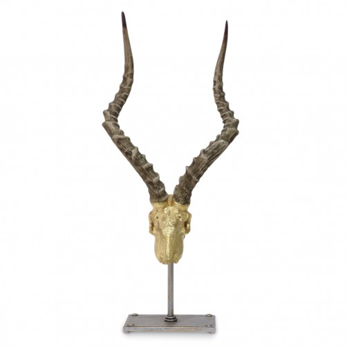 palecek gold leaf impala horn stick up