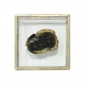 palecek framed petrified wood slice wall decor, medium