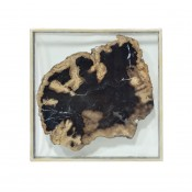 palecek framed petrified wood slice wall decor, large