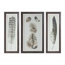 uttermost feather study art, set of 3