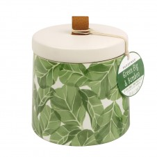 paddywax green fig & bamboo botany candle
