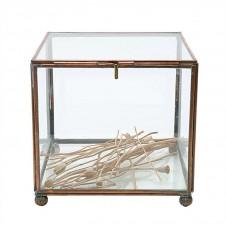 brass and glass display box