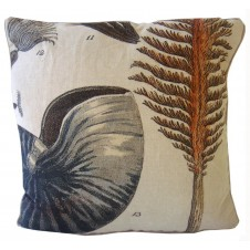 nautilus shell and fan pillow