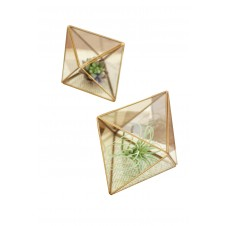 glass & metal multi faceted terrariums set of 2