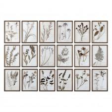 uttermost botany art, set of 18