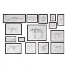 uttermost skeletal study art, set of 15