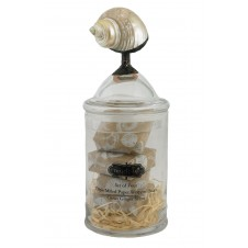 mud pie real shell topped jar of soaps