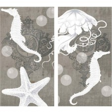 decorative sealife specimens matches