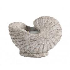 nautilus shell candlepot