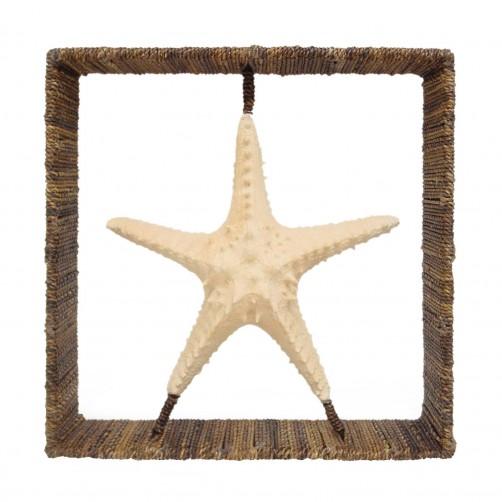 palecek starfish shadow box