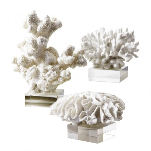 white coral sculpture on glass base