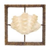palecek clam shadow box