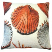 scallop shell pillow