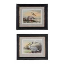 vintage reproduction pelican wall art